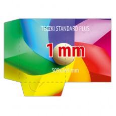 Teczki Standard PLUS 1mm